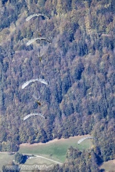 04 Parachute Military 7394