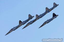 06 Northrop F 5E Tiger II 7293