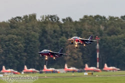 Dornier Alpha Jet 8048