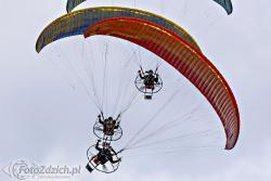 FLYING DRAGONS 3866