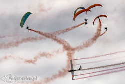 FLYING DRAGONS 4119